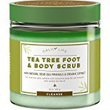 Calily Life Organic Anti Fungal Tea Tree Body and Foot Scrub with Dead Sea Minerals, 24 Oz. - Exfoliating, Powerful Cleansing and Moisturizing - Helps Against Acne, Warts, Jock Itch, Cellulite, etc.