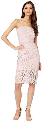 Bardot Lena Lace Dress (Pink Rose) Women's Clothing