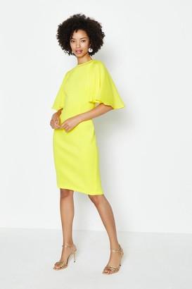 Coast Woven Flare Sleeve Scuba Dress
