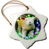 3dRose LLC orn_15693_1 SmudgeArt Wildlife Designs - Lamb Stars - Ornaments