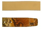 Renato Balestra Antaresia Python Leather Womens Belt.