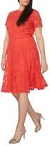 Dorothy Perkins Plus Size Women's Lace Fit & Flare Dress