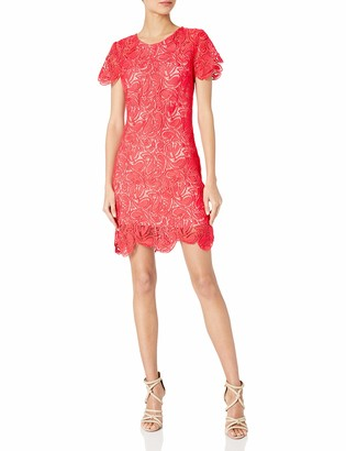 Shoshanna Women's Paisley Guipure Lace Elodie Dress
