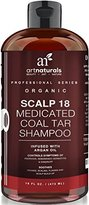 Art Naturals 2 Pack - Scalp18 Coal Tar Therapeutic Anti Dandruff Shampoo 16 oz - Helps clear symptoms of Psoriasis, Eczema, Itchy Scalp & Dandruff - Made in USA with Natural & Organic Ingredients