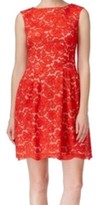 Vince Camuto Red Women's Size 16 Floral Lace A-Line Sheath Dress