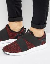 Steve Madden Bryden Sneakers