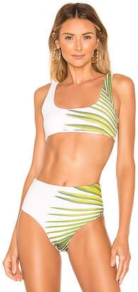 CALi DREAMiNG Bar Bikini Top