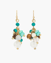 Chico's Alysia Cluster Earrings
