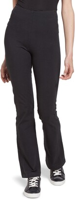 Lysse Tara Bootcut Pants