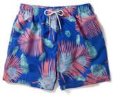 Boardies Apparel Blue Based Fern Print Swim Short
