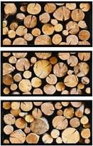 Oliver Gal Wood Stumps Triptych by Cassandra Eldridge (Framed Canvas)