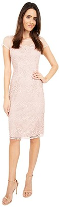 Adrianna Papell Scalloped Guipure Lace Sheath Dress (Apricot Ice) Women's Dress