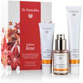 Dr. Hauschka Skin Care Radiant Rose Pack