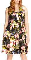 Studio 8 Amara Fit And Flare Floral Dress, Black/Multi