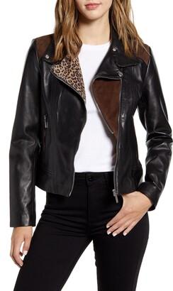 Bernardo Mixed Media Leather Moto Jacket
