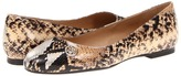 Armani Jeans SW510NN1J (Khaki Snake) - Footwear