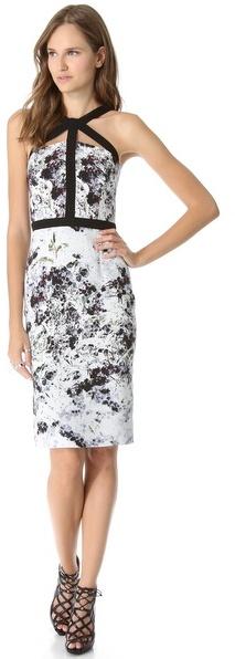 Cushnie et Ochs Print Sleeveless Dress