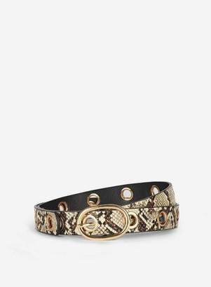 Dorothy Perkins Womens Multi Colour Snake Print Eyelet Detail Belt, Multi Colour