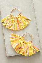 Mignonne Gavigan Mary Citron Hoop Earrings
