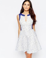 Hybrid Eniko Lace Skater Dress with Contrast Trim