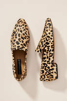 Steve Madden Steven by Haylie Leopard Loafers