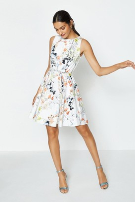 Coast Cotton Fit & Flare Dress