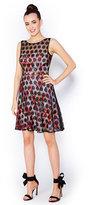 Betsey Johnson Dotty Overlay Floral Dress