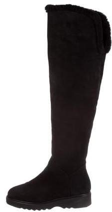 Aquatalia Suede Over-The-Knee Boots