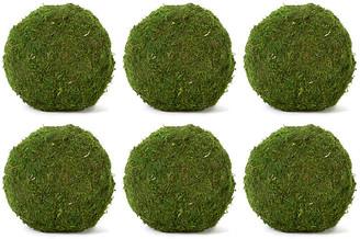 "Knud Nielsen Company Set of 6 6"" Moss Balls - Dried"