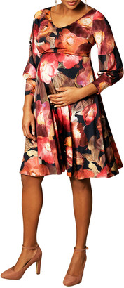 Tiffany Rose Maternity Pixie Watercolor Floral V-Neck Dress