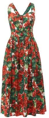 Dolce & Gabbana Geranium-print Cotton Poplin Midi Dress - Womens - Red Multi
