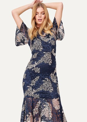 Phase Eight Jamil Lace Fluted Sleeve Dress