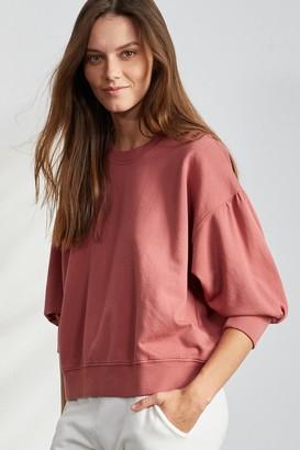 Velvet by Graham & Spencer Maureen 3/4 Sleeve Sweatshirt