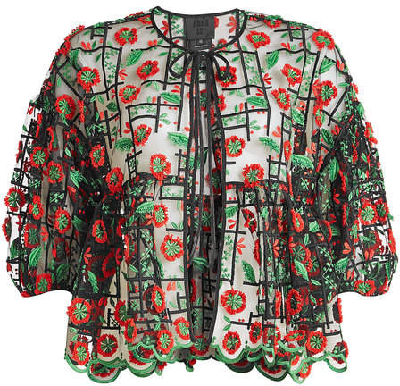 Anna Sui Embroidered Blouse