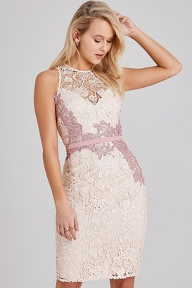 Little Mistress Eloise Rose Lace Pencil Dress