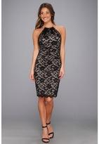 Eliza J Lace Necklace Dress (Black) Women's Dress