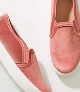 LOFT Velvet Slip On Sneakers