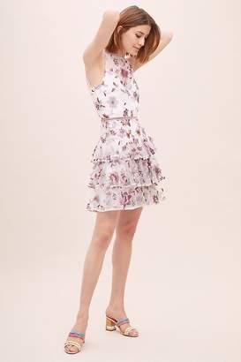 ML Monique Lhuillier Emilie Embroidered-Mesh Dress