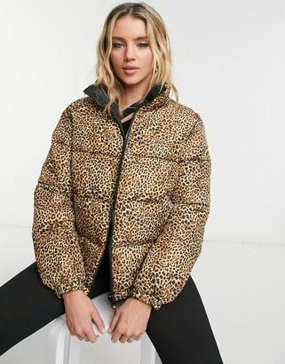 BB Dakota cool kitten reversible puffer coat in brown