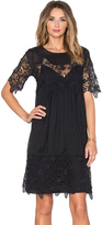 Velvet by Graham & Spencer Iulia Audrey Lace Short Sleeve Dress