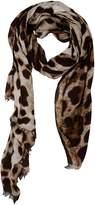 Dolce & Gabbana Scarves - Item 46517664