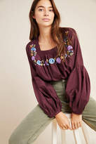 Samant Chauhan Helia Embroidered Swing Blouse