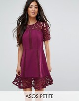 Asos Premium Lace Insert Mini Dress