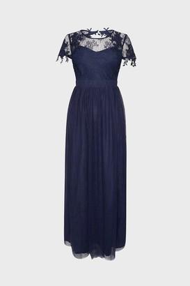 Coast Lace Yoke Mesh Maxi Dress