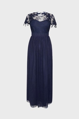 Coast Short Sleeve Lace Yoke Mesh Maxi Dress