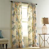 Pier 1 Imports Flocked Butterfly Smoke Blue Curtain
