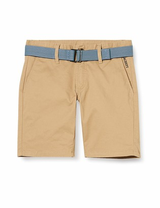 Hackett London Hackett Boy's Belt Short B