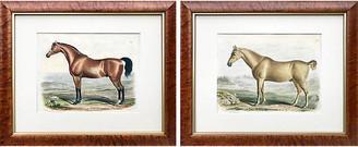 One Kings Lane Vintage 1840 English Horse Lithographs - Set of 2 - Antiquarian Art Company
