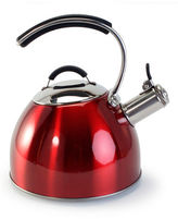 OXO Stovetop Kettle