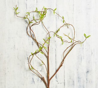 Pottery Barn Faux Curling Willow Branch